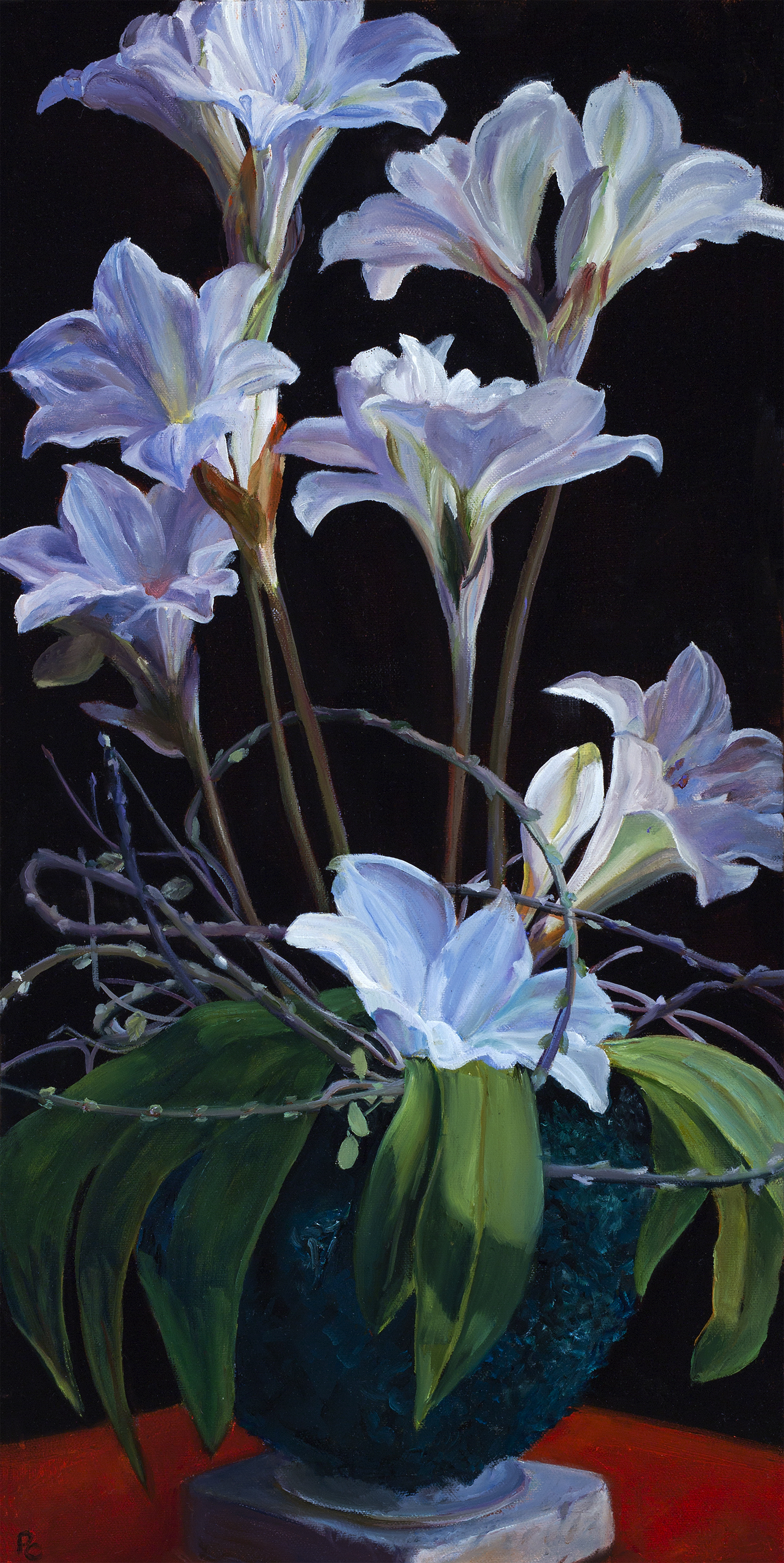Lilies of Provence