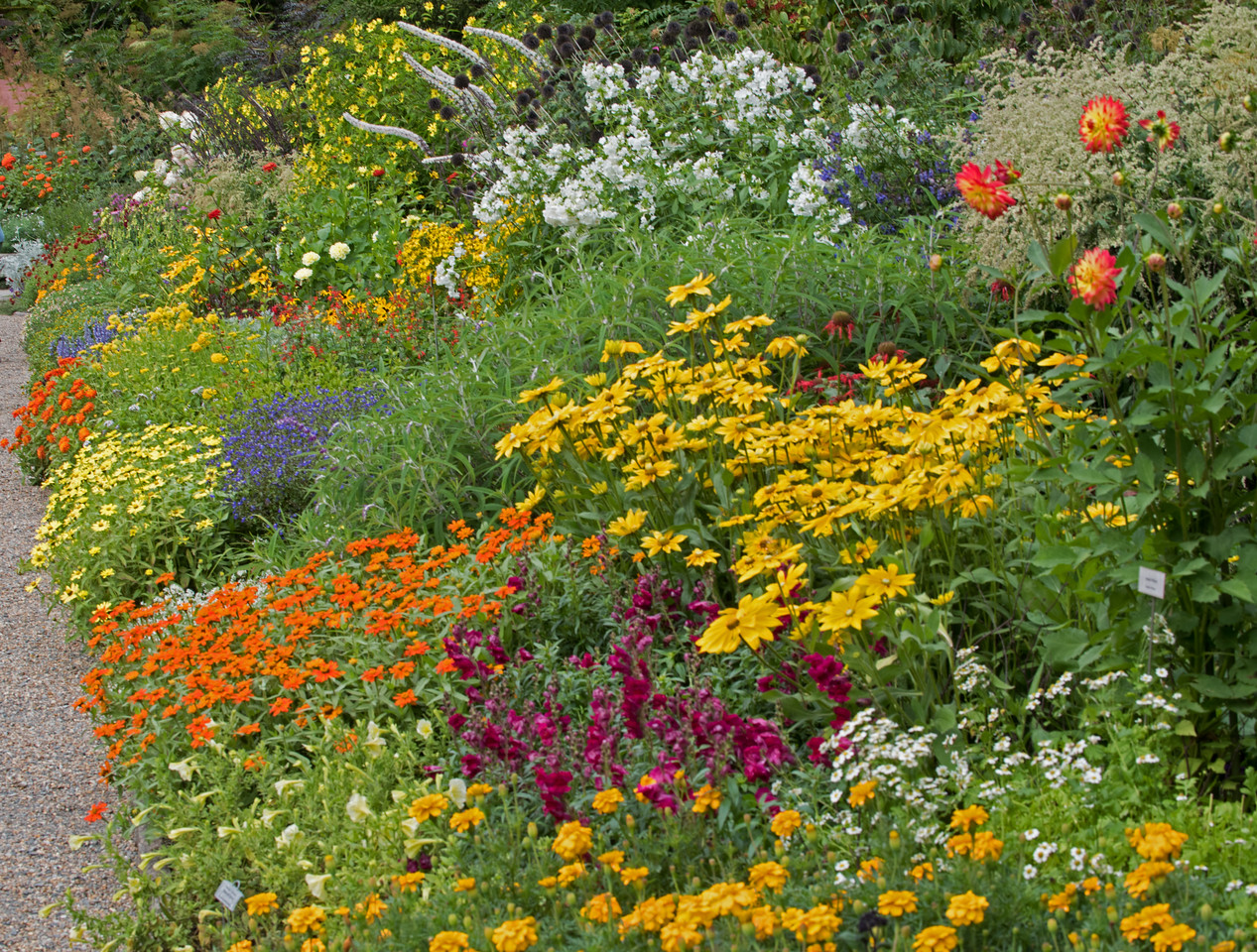 Garden 10.jpg