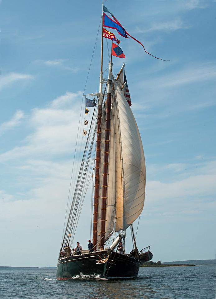 Sail 04.jpg