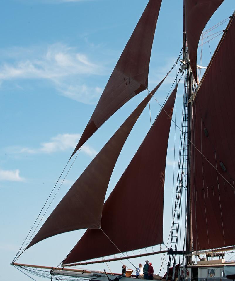 Sail 06.jpg