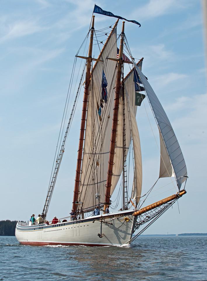 Sail 08.jpg