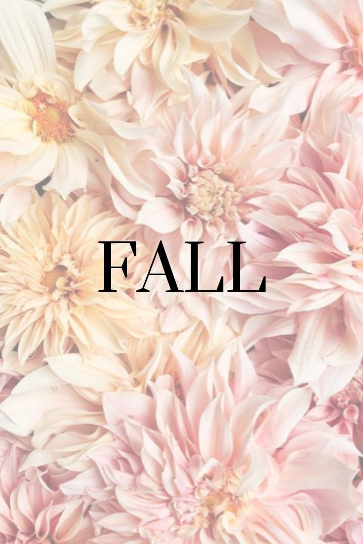 farmer-florist-flowerwell-rochester-new-york41.jpg