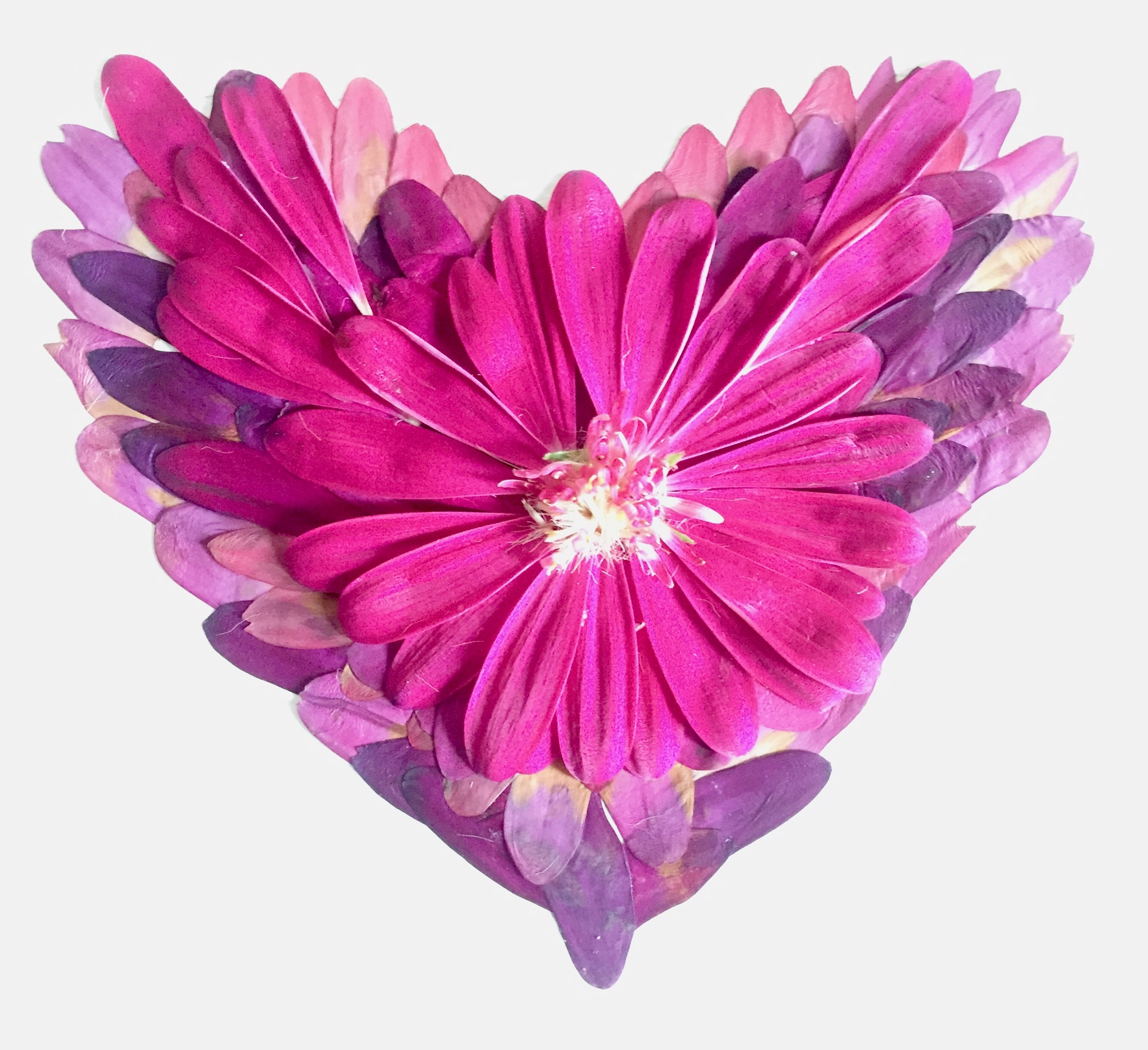 Copy of heart flower.jpg