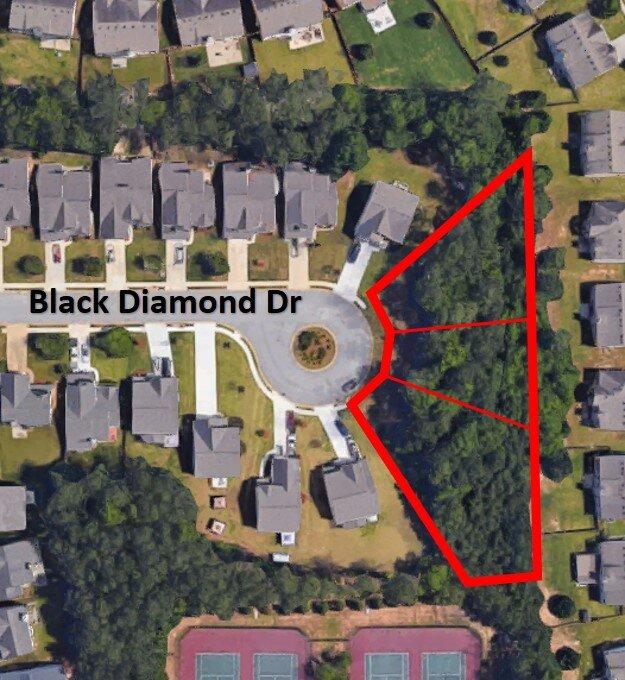 Black Diamond Dr Aerial.jpg