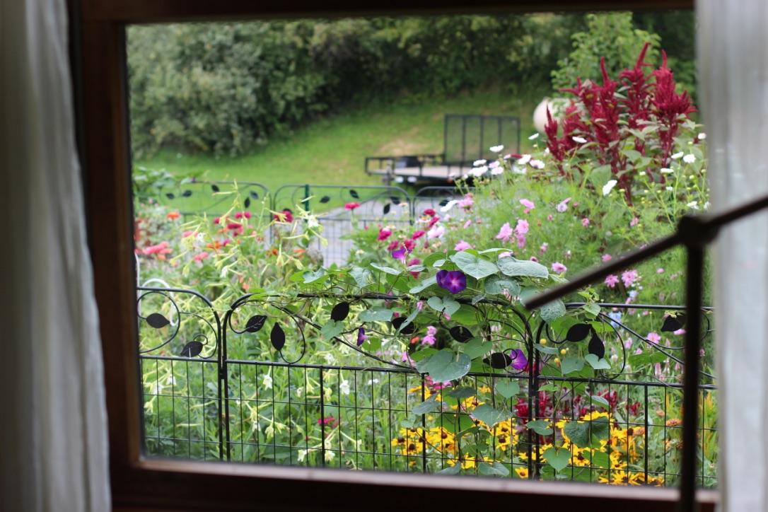 Ivory Blossom | Loveshyla.com | Farmer/ Florist in Bridgeport, WV | Dinnerplate Dahlia, Soft, natural ivory Bouquet