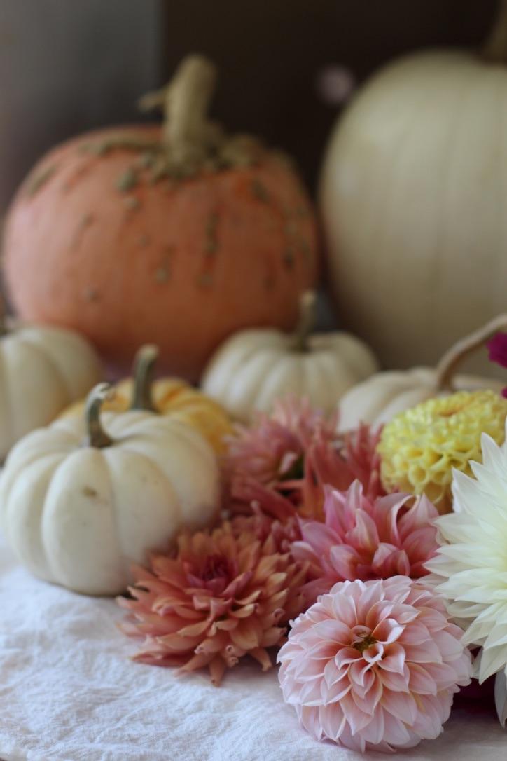 Flowers & Pastel Pumpkins | Loveshyla.com