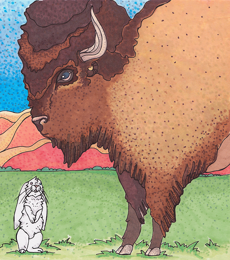 Robert P. Rabbit and the Buffalo