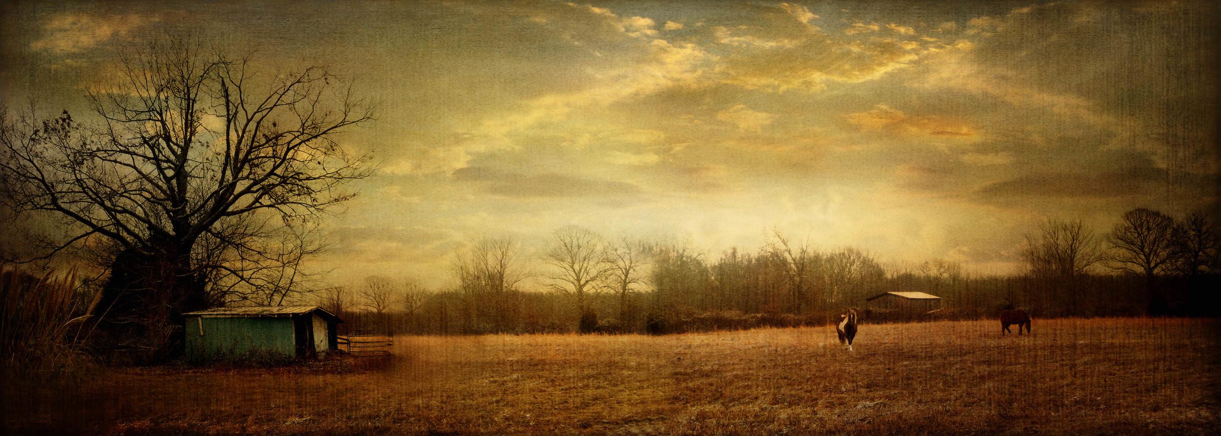 tennessee pasture.jpg
