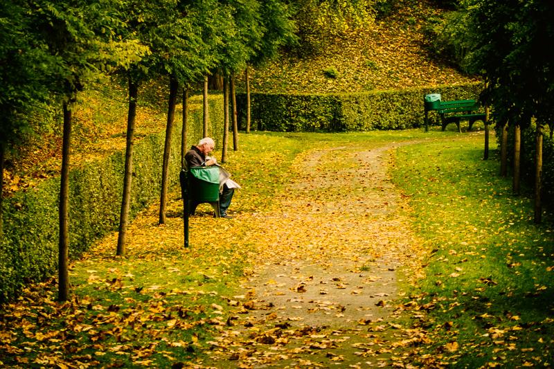 Munich Autumn