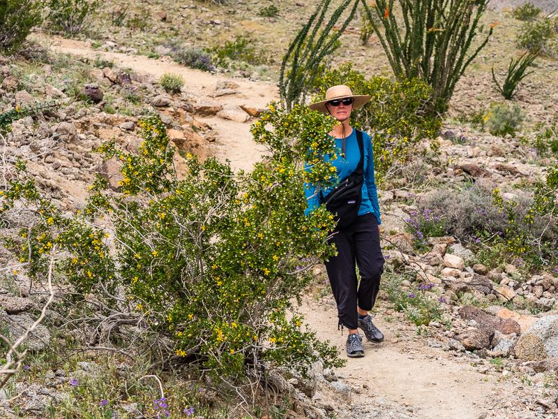posts_indio_170322_USA_indio_CA_hiking_026.jpg