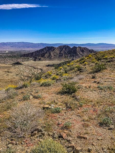 posts_indio_170328_USA_indio_CA_hiking_001.jpg