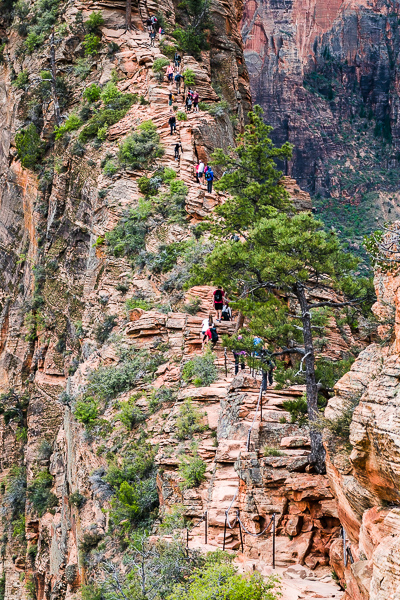 """The last 1/2 mile of the """"TRAIL"""" to Angels Landing LOOK CLOSE fo"""