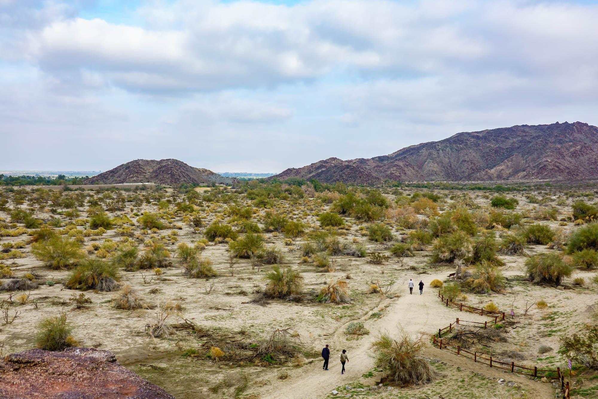 Living Desert Museum