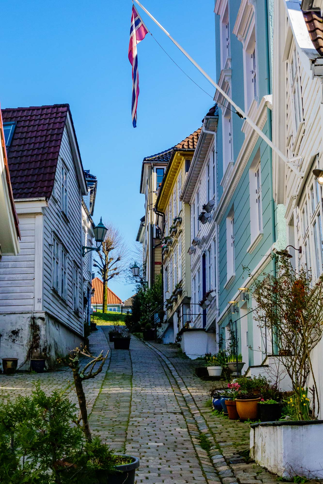 Our Bergen Neighborhood