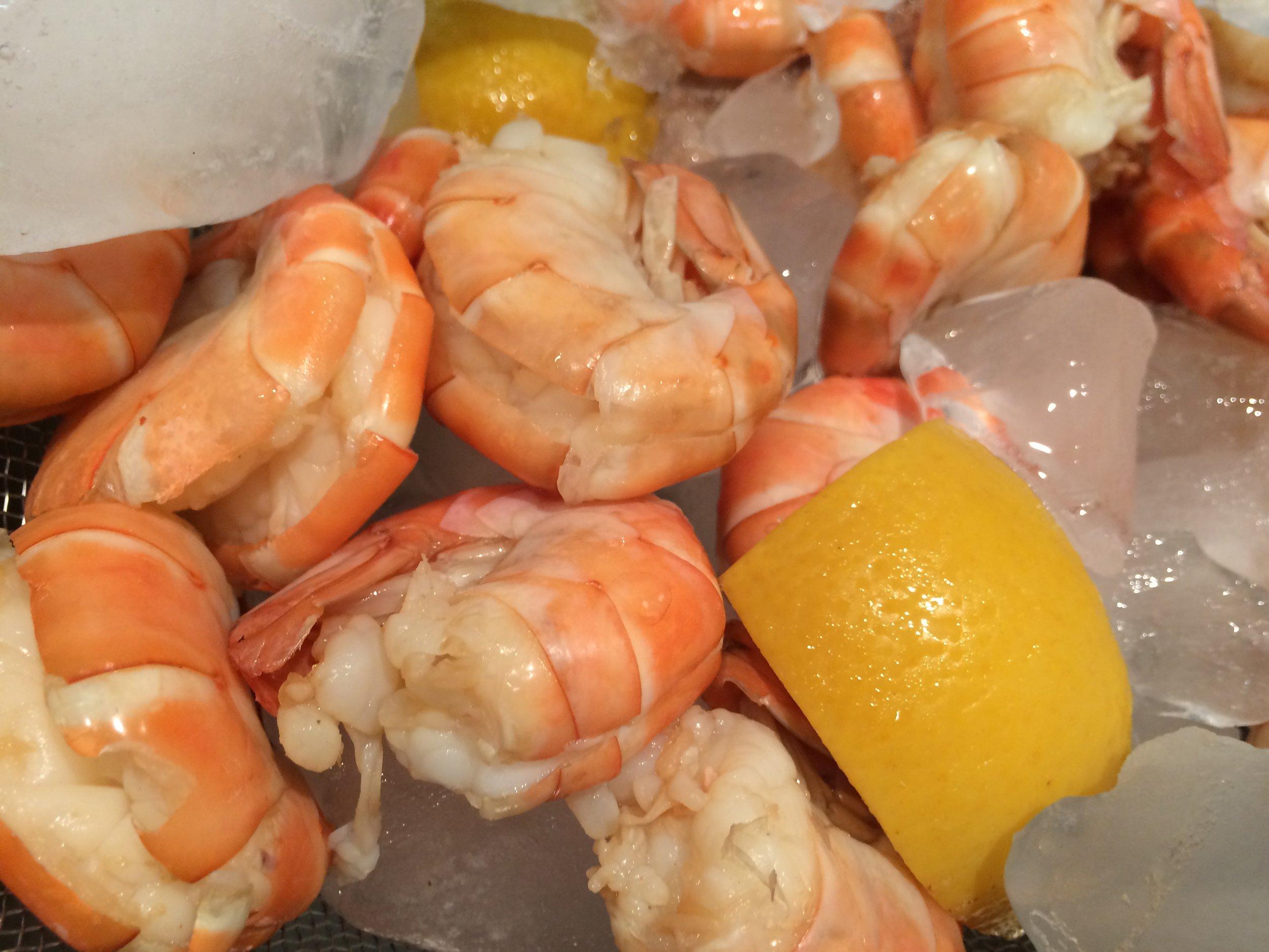 Bolied Shrimp 2JPG.JPG