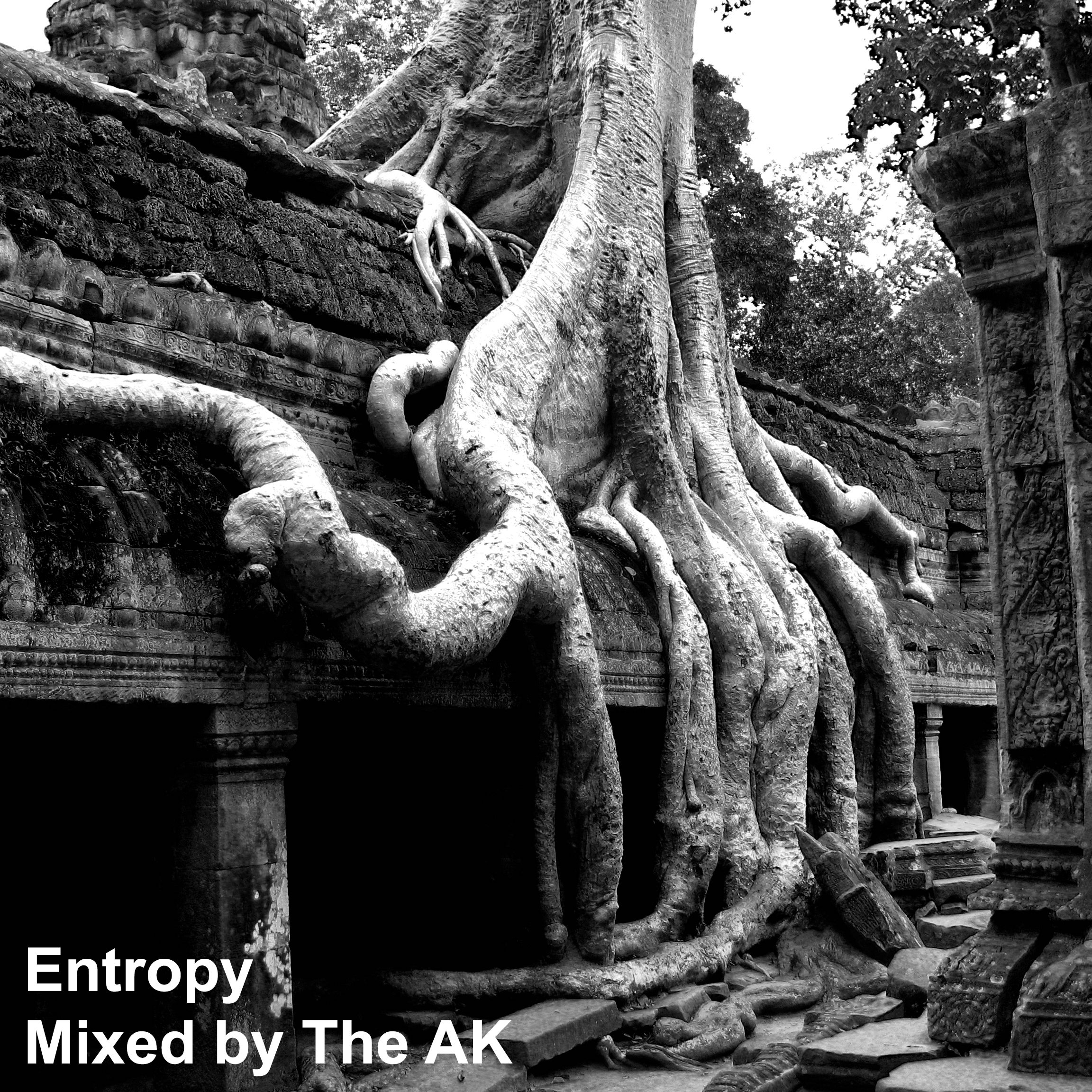 Entropy Cover.png