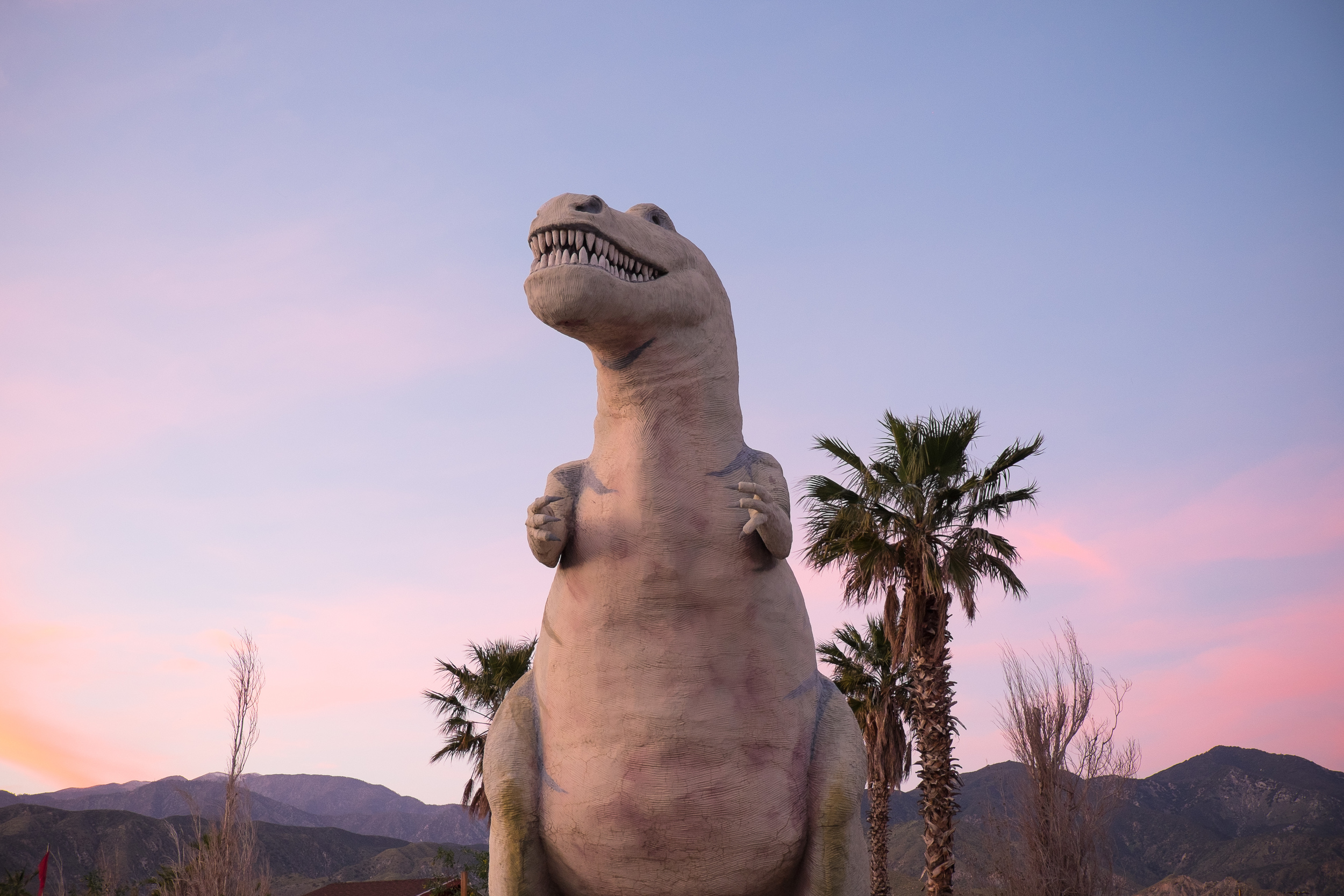 And one stop on the way home to see the Cabazon Dinosaurs. This guy's name is Mr. Rex, and he weighs 100 tons.
