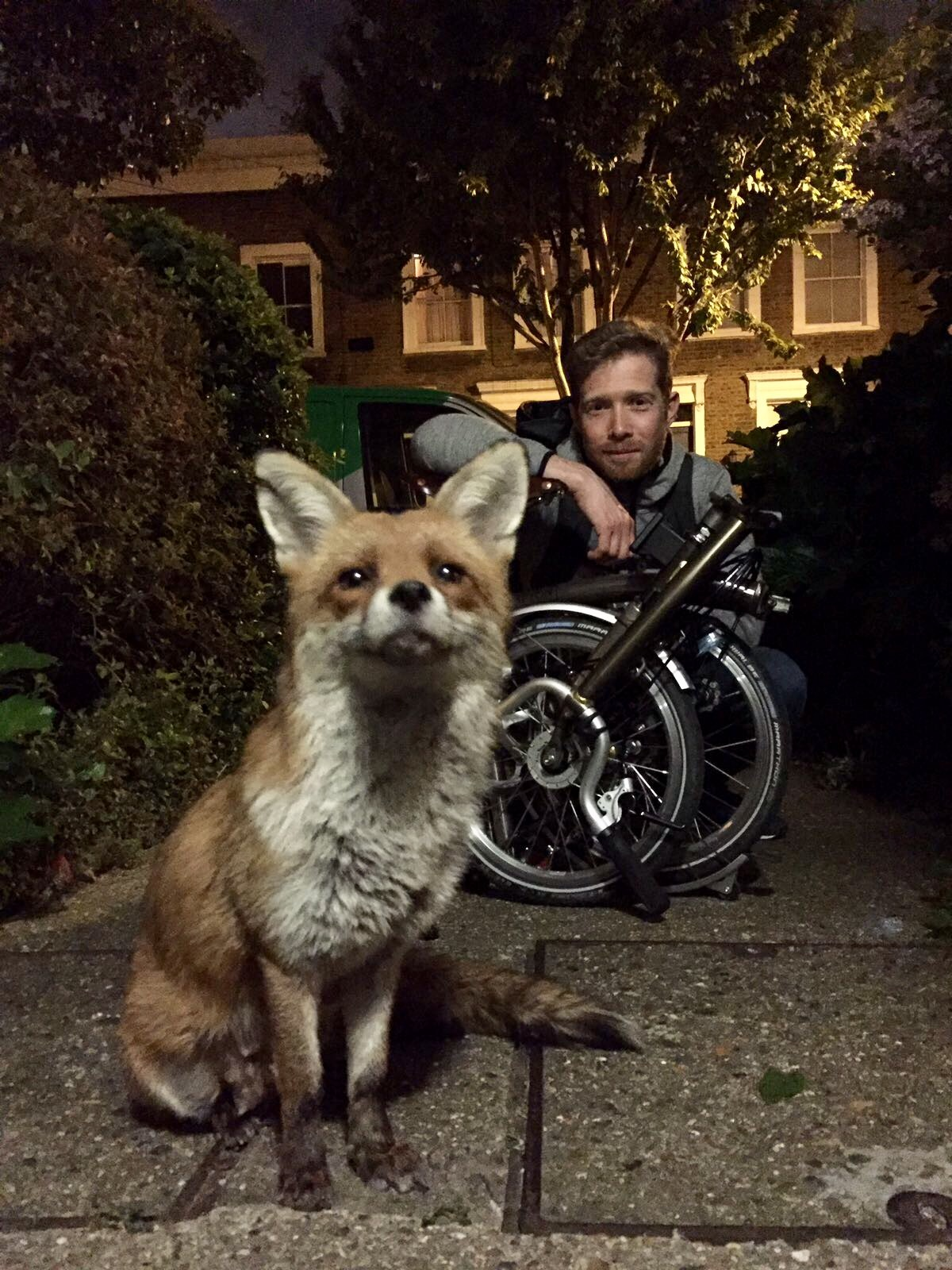 Zeb and Gaspard the Fox