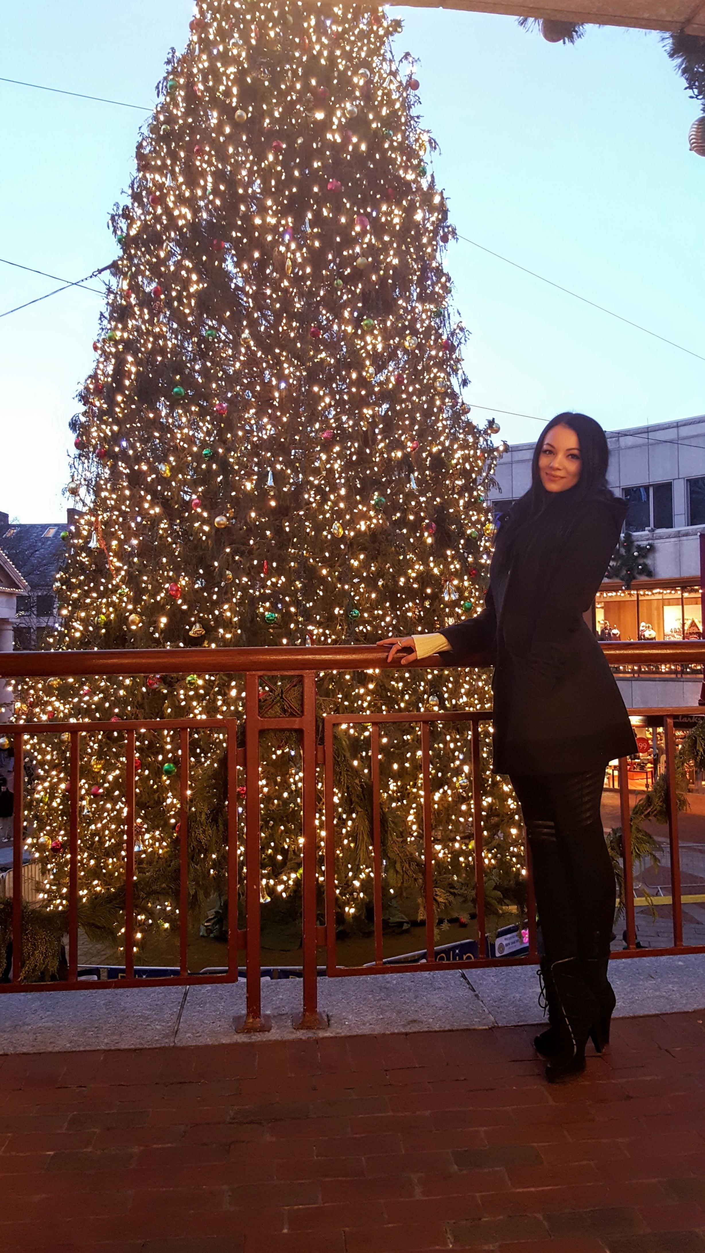 lifeofardor Boston Christmas tree