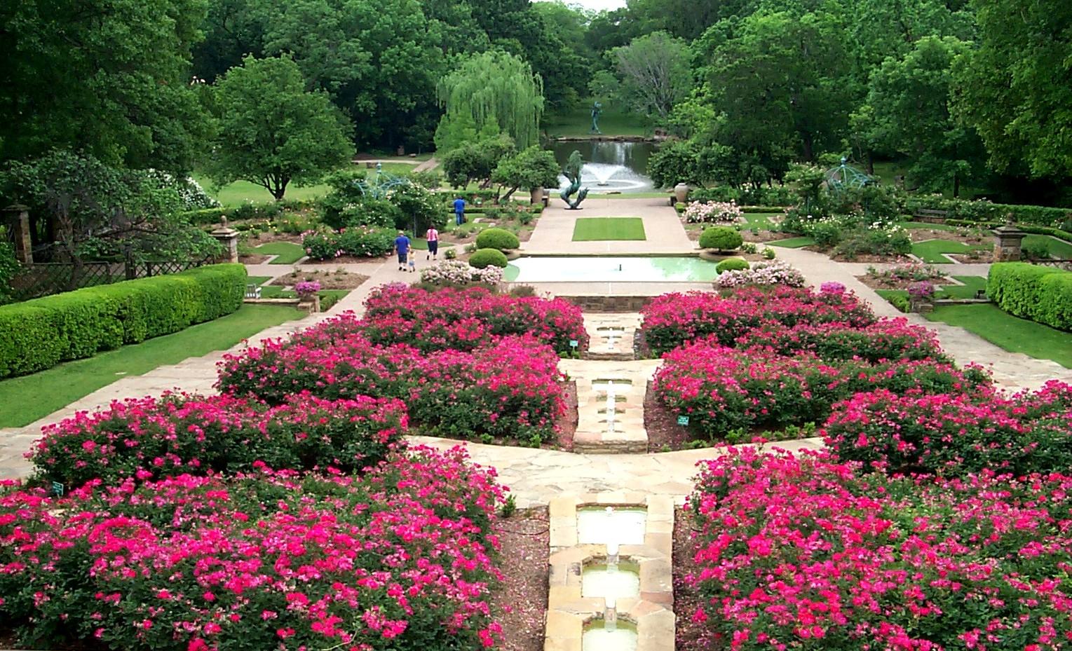 Roses in the Rose Garden.