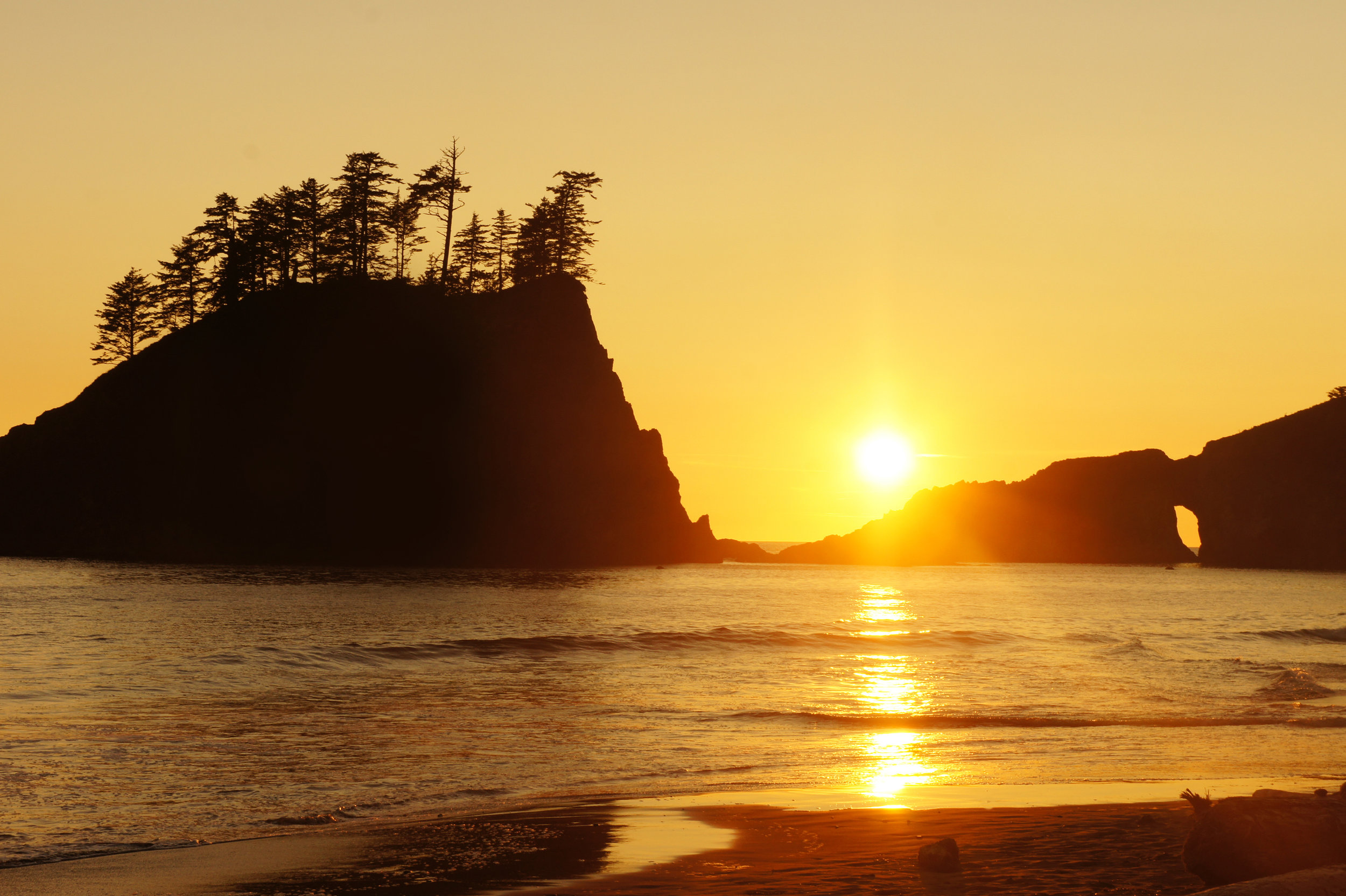"Travel >>>   ""How to Get Lost on the Olympic Coast"""