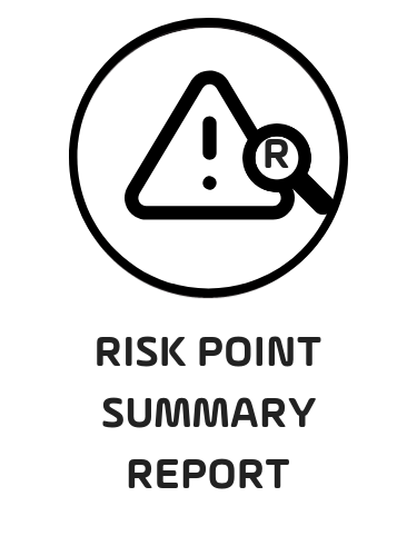 3. Risk Point Summary Report - Black.png