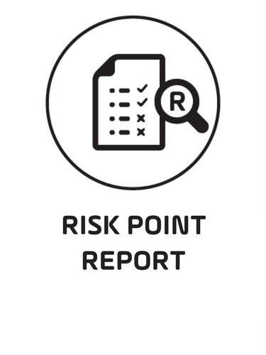 1. Risk Point Report Black.png