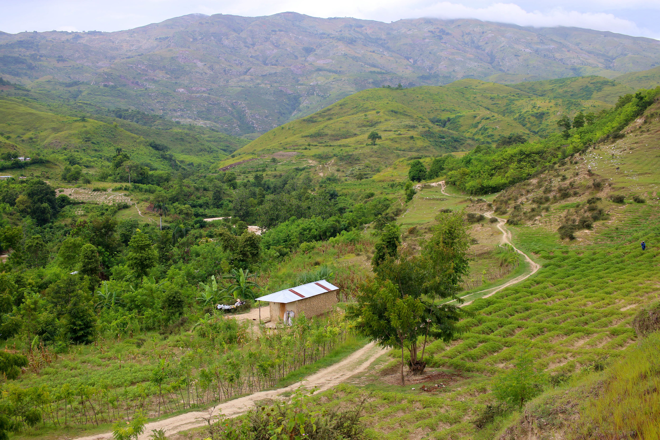 Gardens in a valley near Kabay, Haiti. Photo/Annalee Giesbrecht