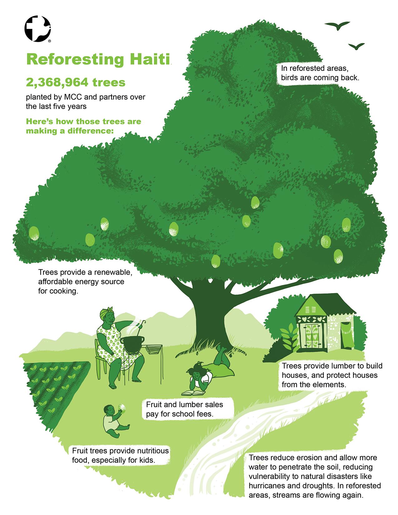 ReforestationInfographic.April12.web.png