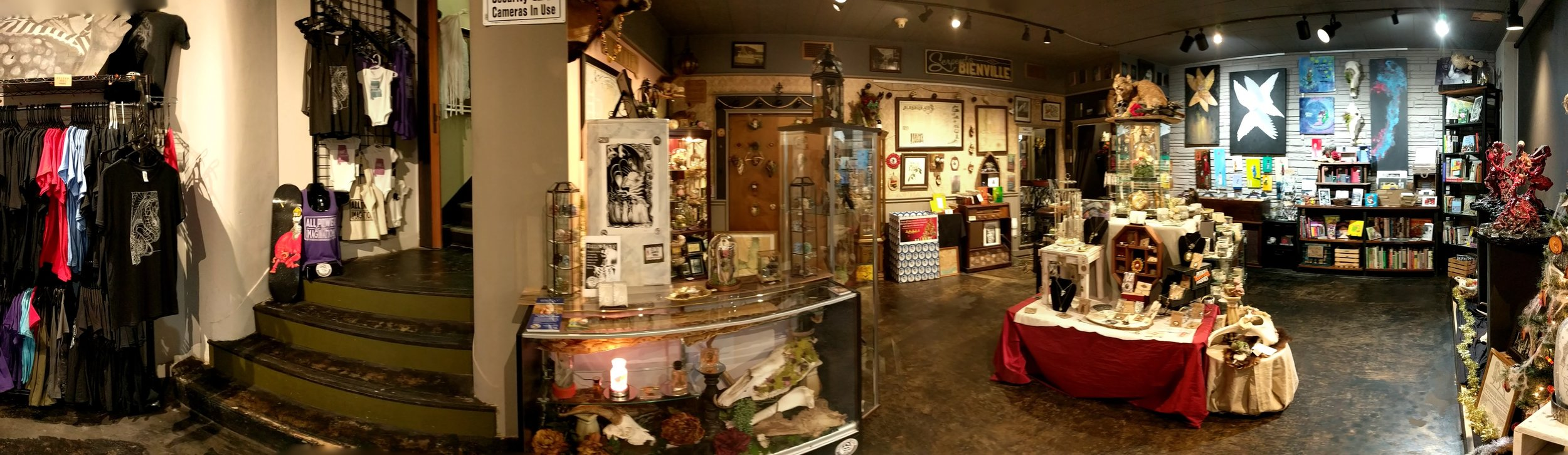 A view inside of the Serpents of Bienville Store located at 754 Government Street in downtown Mobile, Alabama