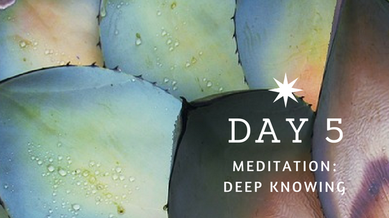 Day 5 Meditation: Deep Knowing