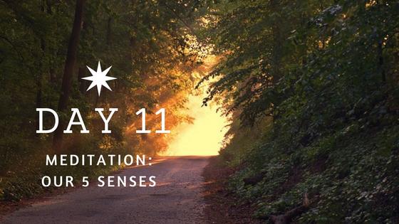 Day 11 Meditation: 5 Senses