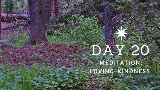 Day 20 Loving Kindness