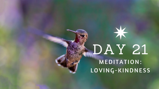 Day 21 Loving Kindness