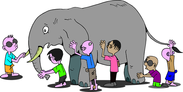 anxiety and elephants