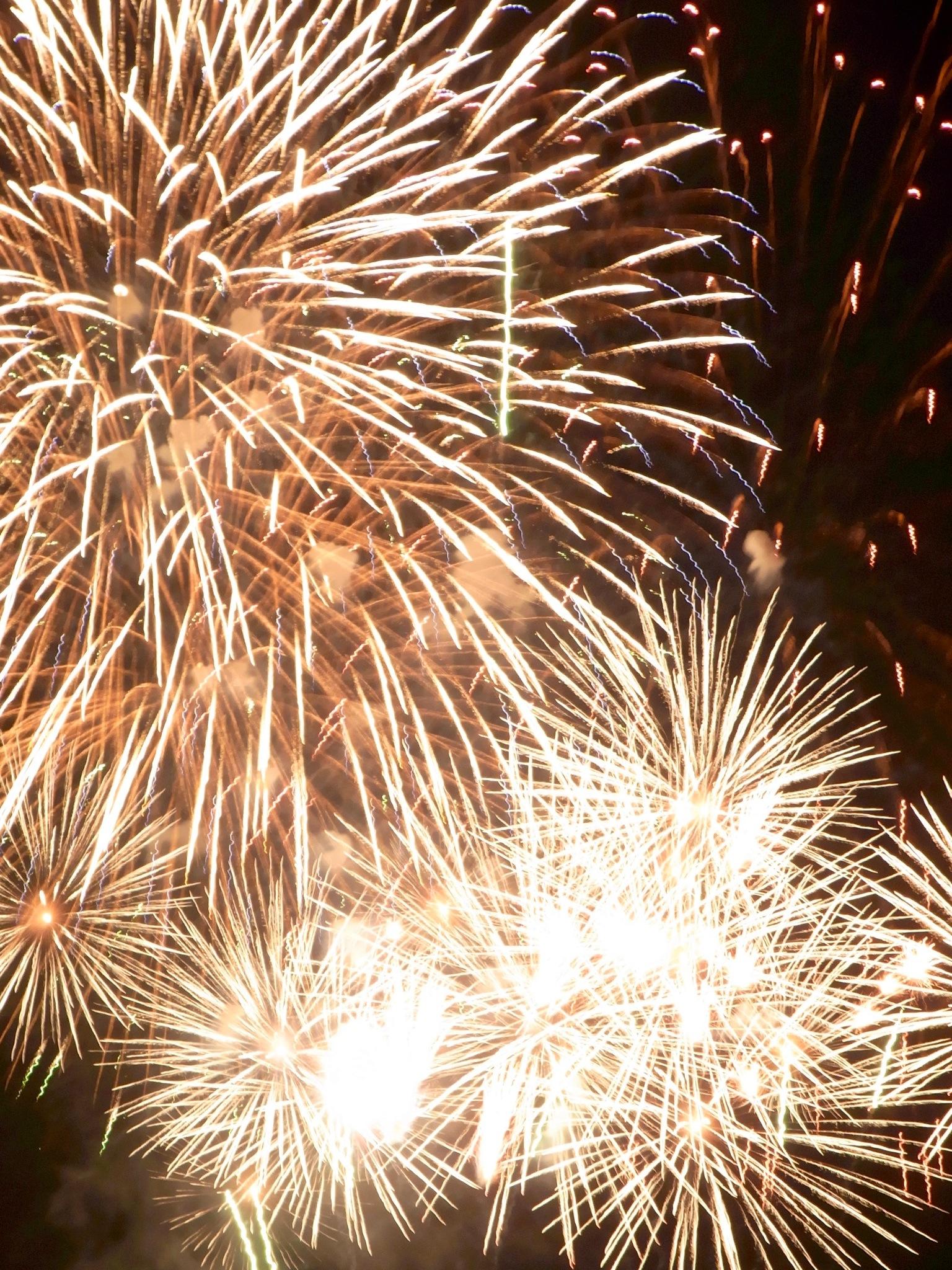 Firework via Pinterest.jpg