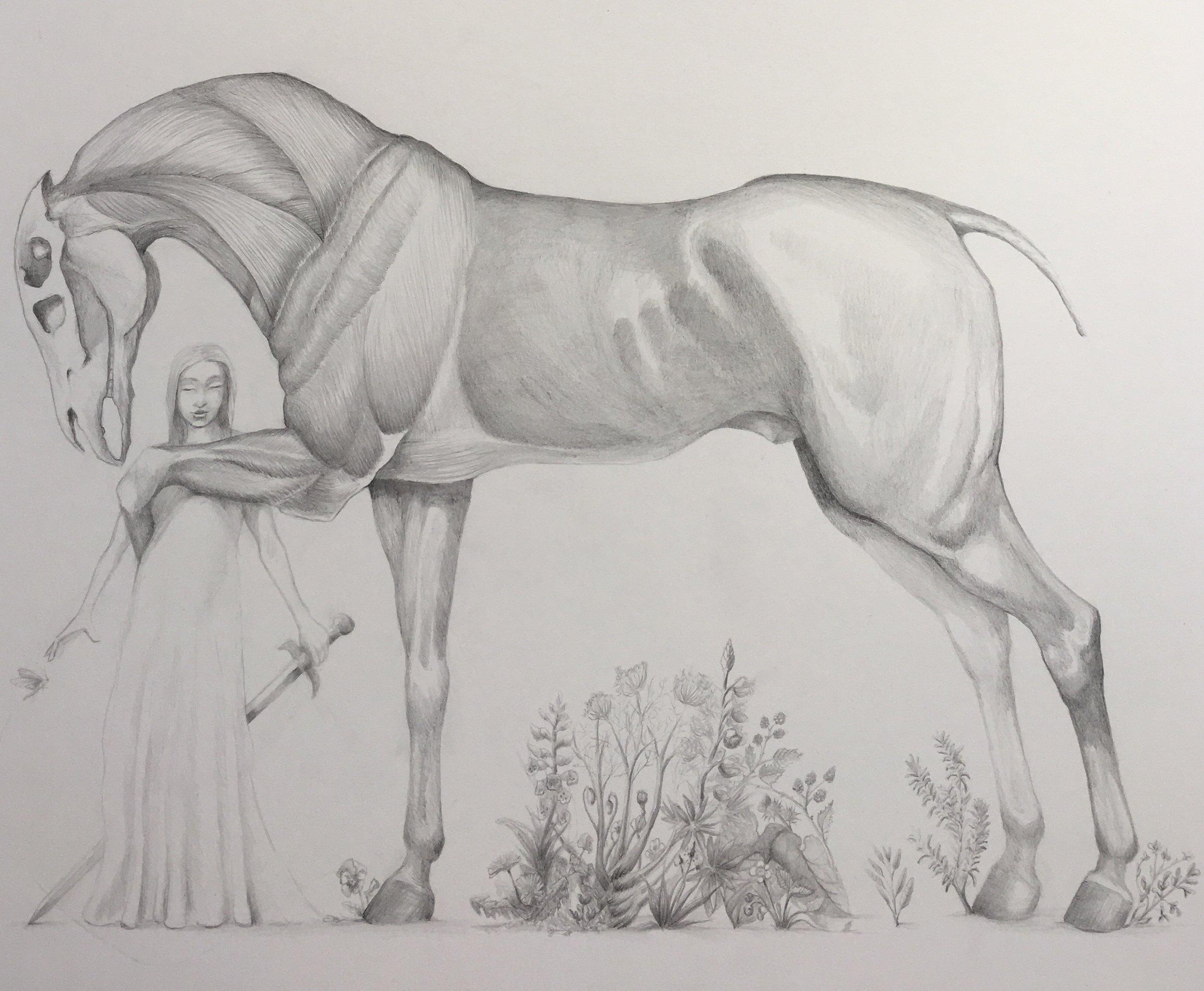 keys horse and girl.jpg
