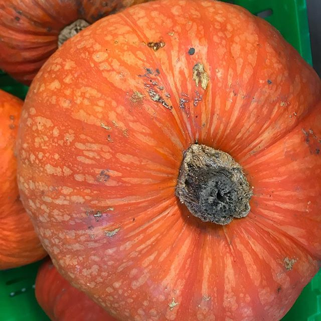🎃 🍁 🍂 all the #autumn yummies on the island... roast anyone? You can find an abundance of amazing fruit and vegetables in stores here!