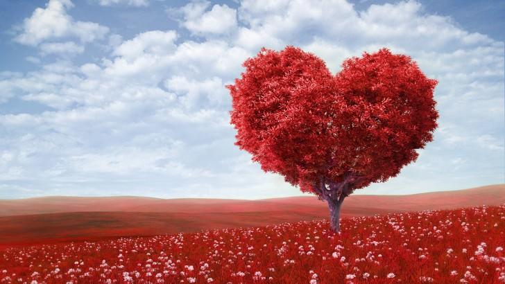 Belief-realities-about-love (1).jpg