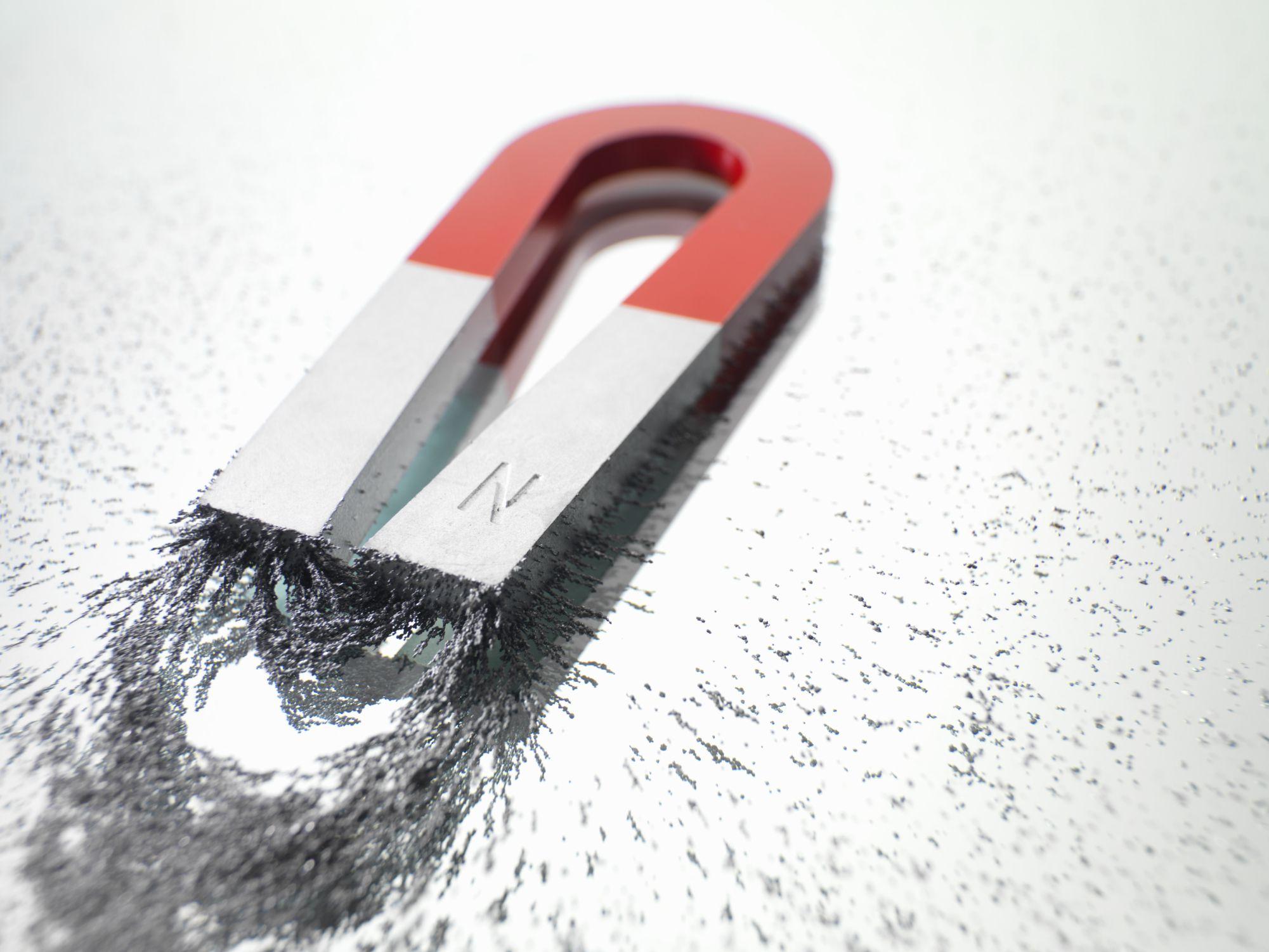 magnet 022218.jpg
