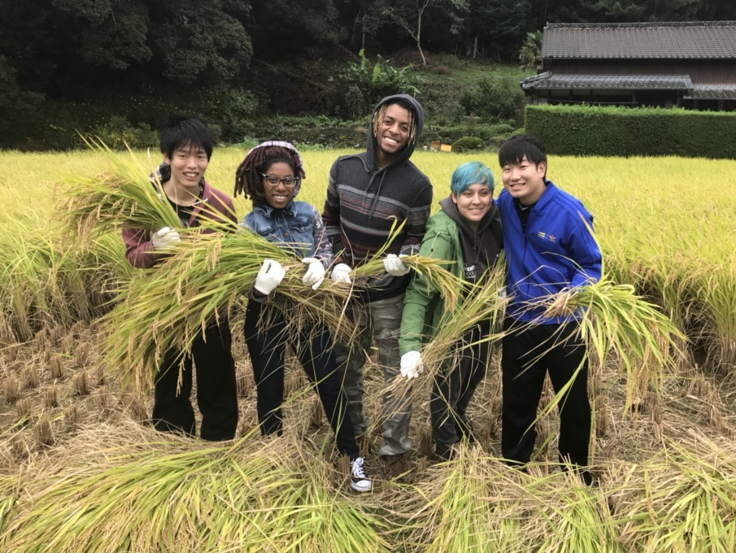 Harvest time_171024_0070 (2).jpg
