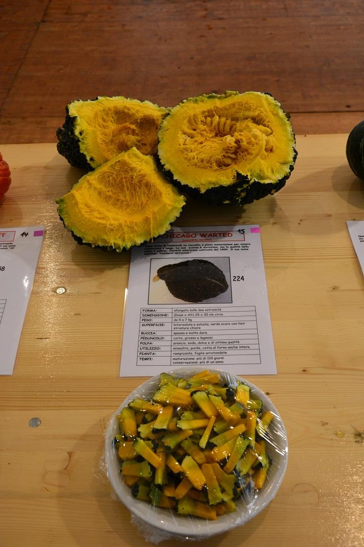 mercato delle zucche 064.JPG