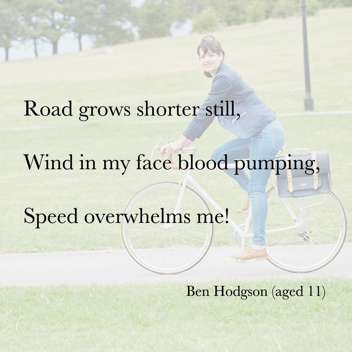 Baiku bike bag poetry 1