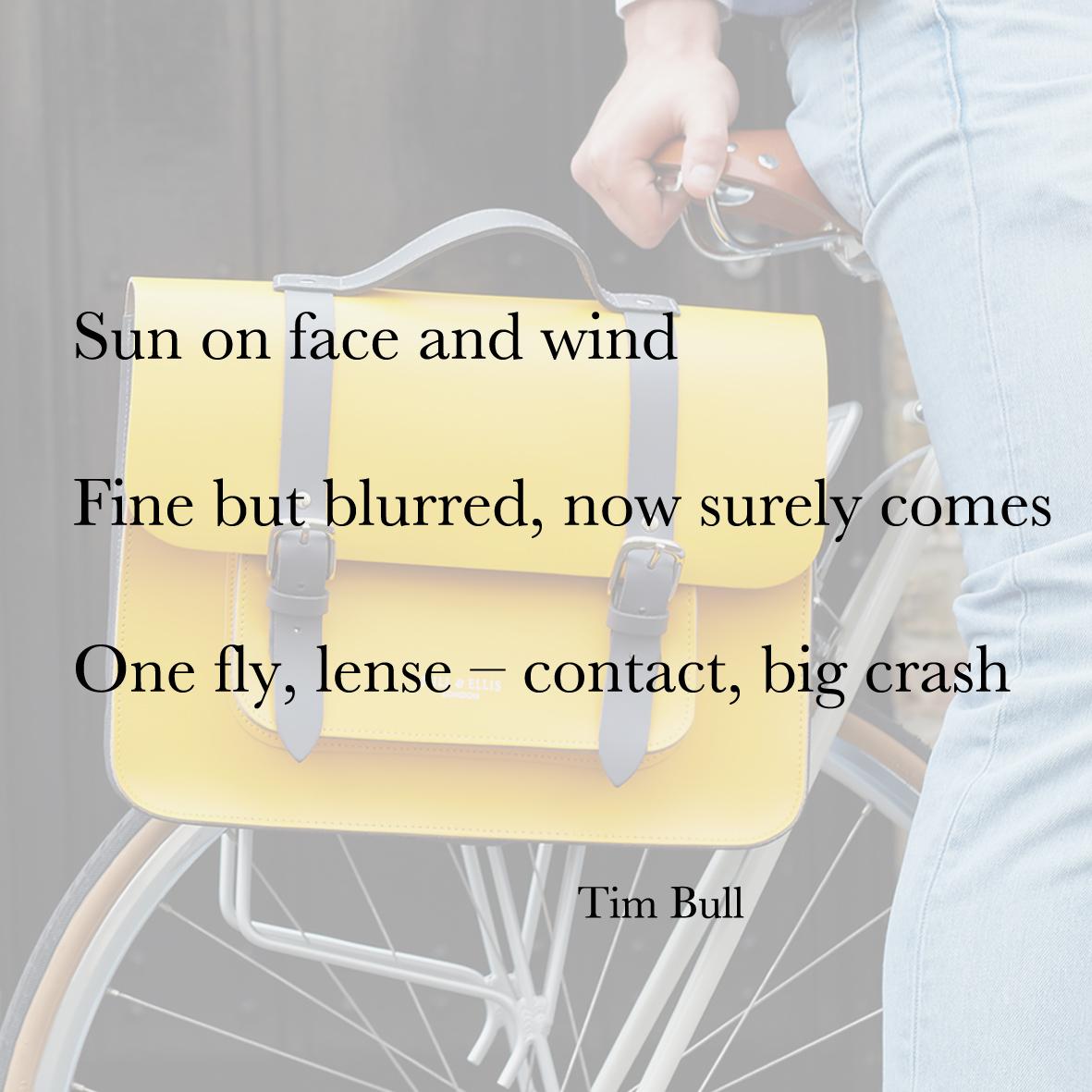 Baiku Tim Bull Bike Bag poetry