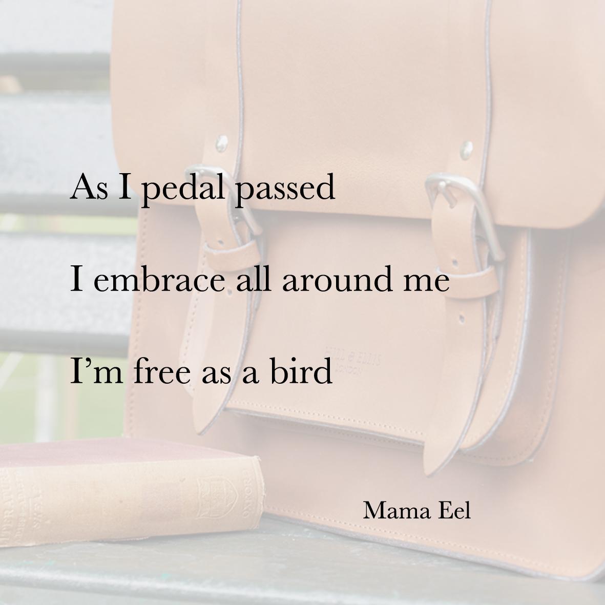 Baiku bike bag poetry