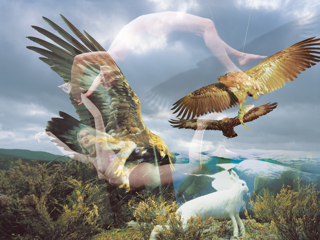 Eagles, 2001 C-Print  Courtesy the artist and Rabouan Moussion Gallery Paris