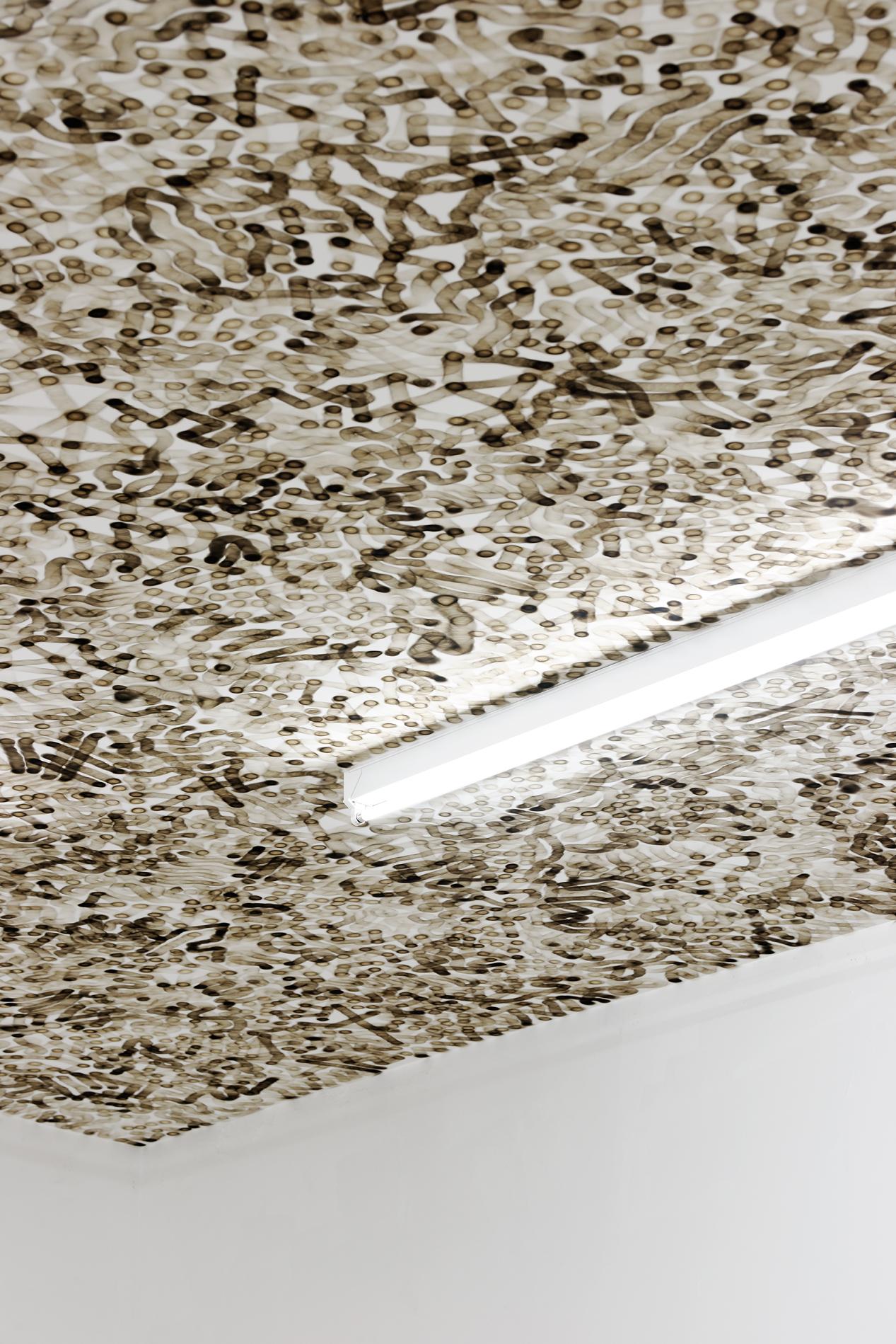 Olivier Kosta-Théfaine    Installation sur plafond à la flamme de briquet   Courtesy the artist and Galerie Rabouan Moussion Crédit photo : Aurélien Mole