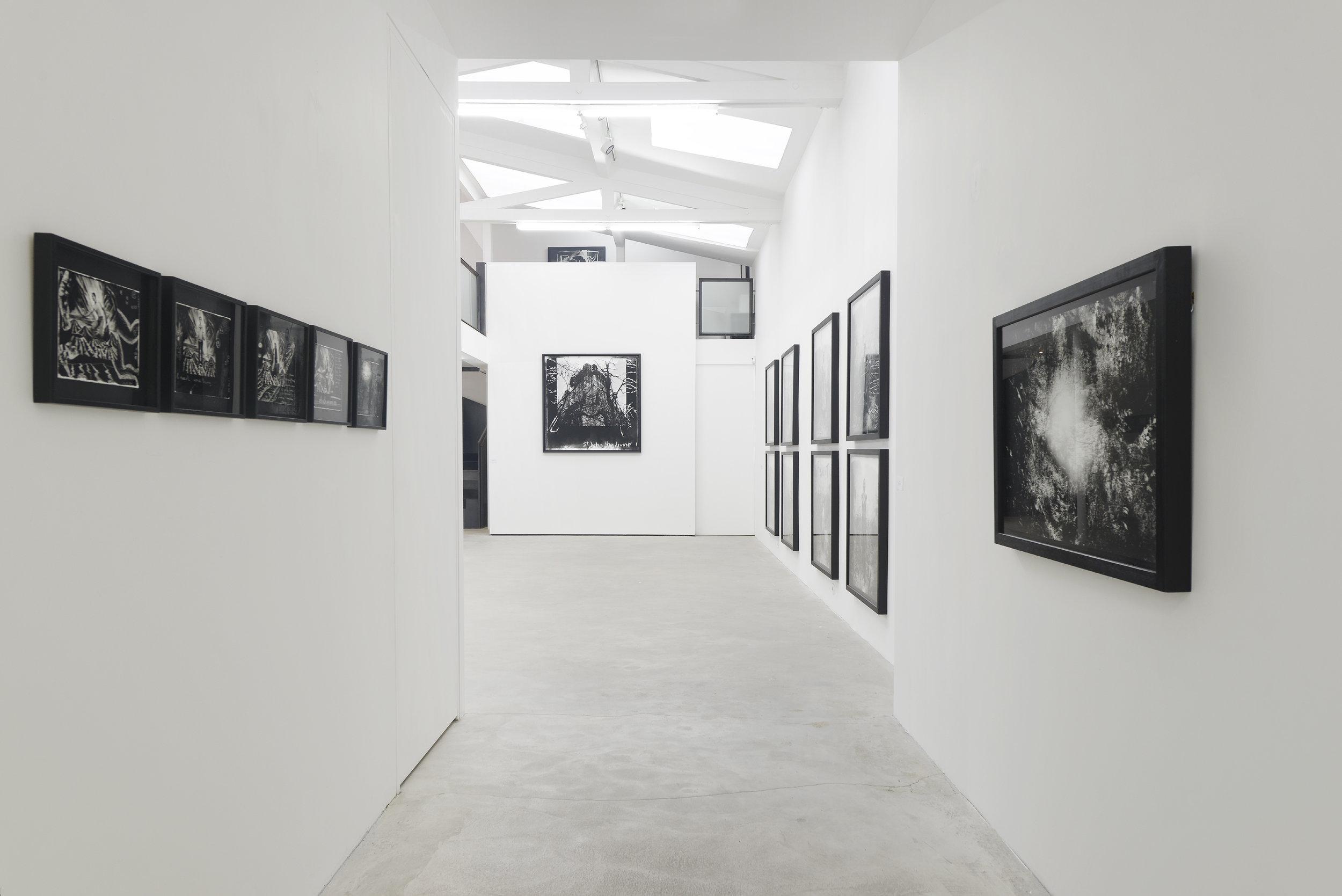Louis Jammes, Parcours, Galerie Rabouan Moussion