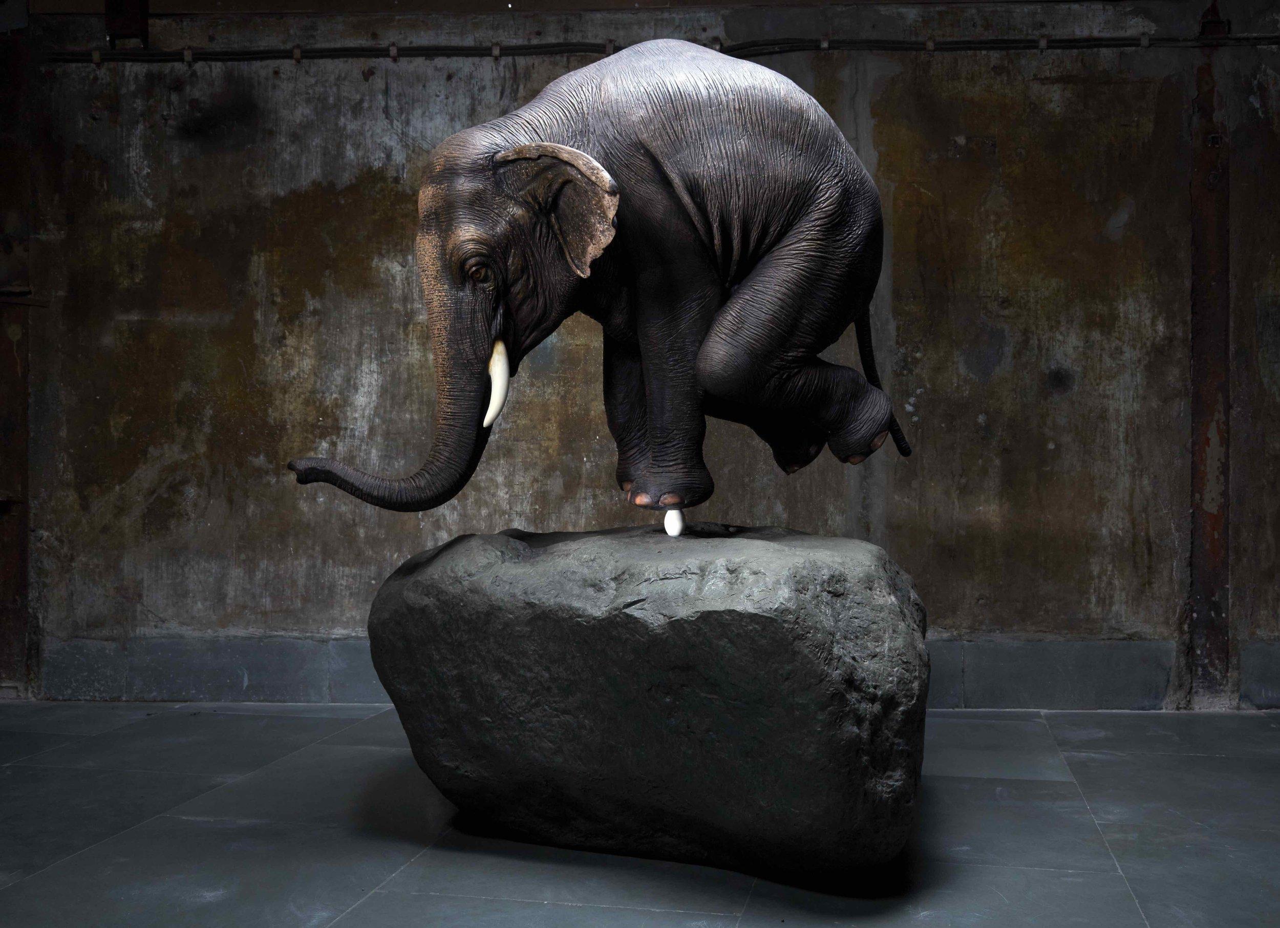 Sunil Gawde_Elephant on egg1.jpg