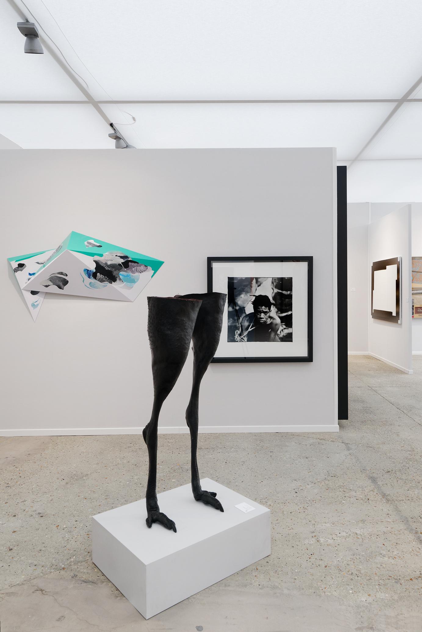 Art Paris Art Fair 2017 - Galerie Rabouan Moussion